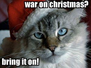 xmas-war-cat_0